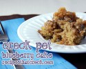 Crock Pot Blueberry Cake