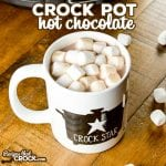 The BEST Crock Pot Hot Chocolate