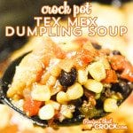Crock Pot Tex Mex Dumpling Soup