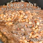 Crock Pot Hot Fudge Peanut Butter Cake