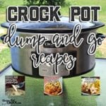 Crock Pot Dump and Go Recipes