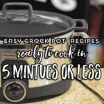 Easy Crock Pot Recipes- 5 minutes or less