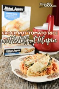 Are you looking for a quick and easy lunch or dinner idea for one to two people? Our Crock Pot Tomato Rice with Stuffed Tilapia is a delicious recipe that is perfect for those looking for individual portions.