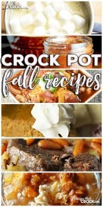 This week for our Friday Favoriteswe have some yummy Crock Pot Fall Recipes like Perfect Crock Pot Roast,Meat Lover's Crock Pot Chili,Crock Pot Beef Stew,Crock Pot Hot White Chocolate,Crock Pot Hot Chocolate,Easy Cinnamon Cider,Crock Pot Crustless Pumpkin Pie,Slow Cooker Pumpkin Butter,Slow Cooker Pumpkin Spoon Cake,Crock Pot Salted Caramel Apple SpoonCake,Crock Pot Apple Dumplings andSlow Cooker Apple Butter.