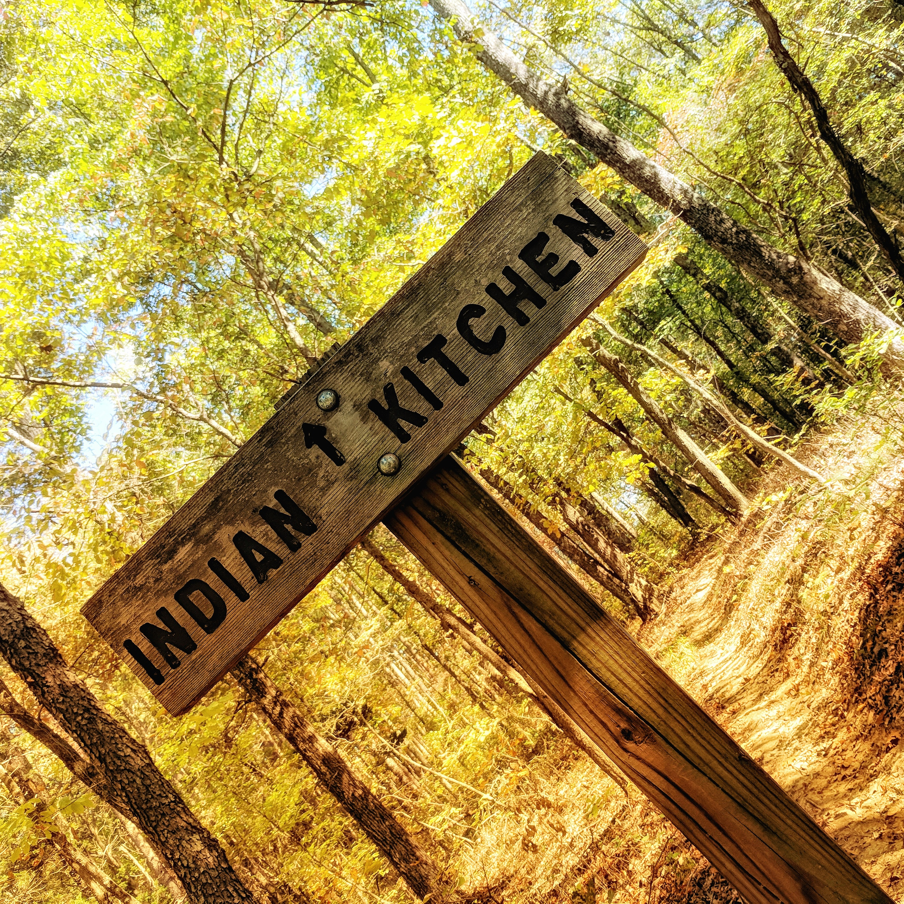 Hike to Indian Kitchen in Shawnee National Forest, IL. Great hiking for family travel.