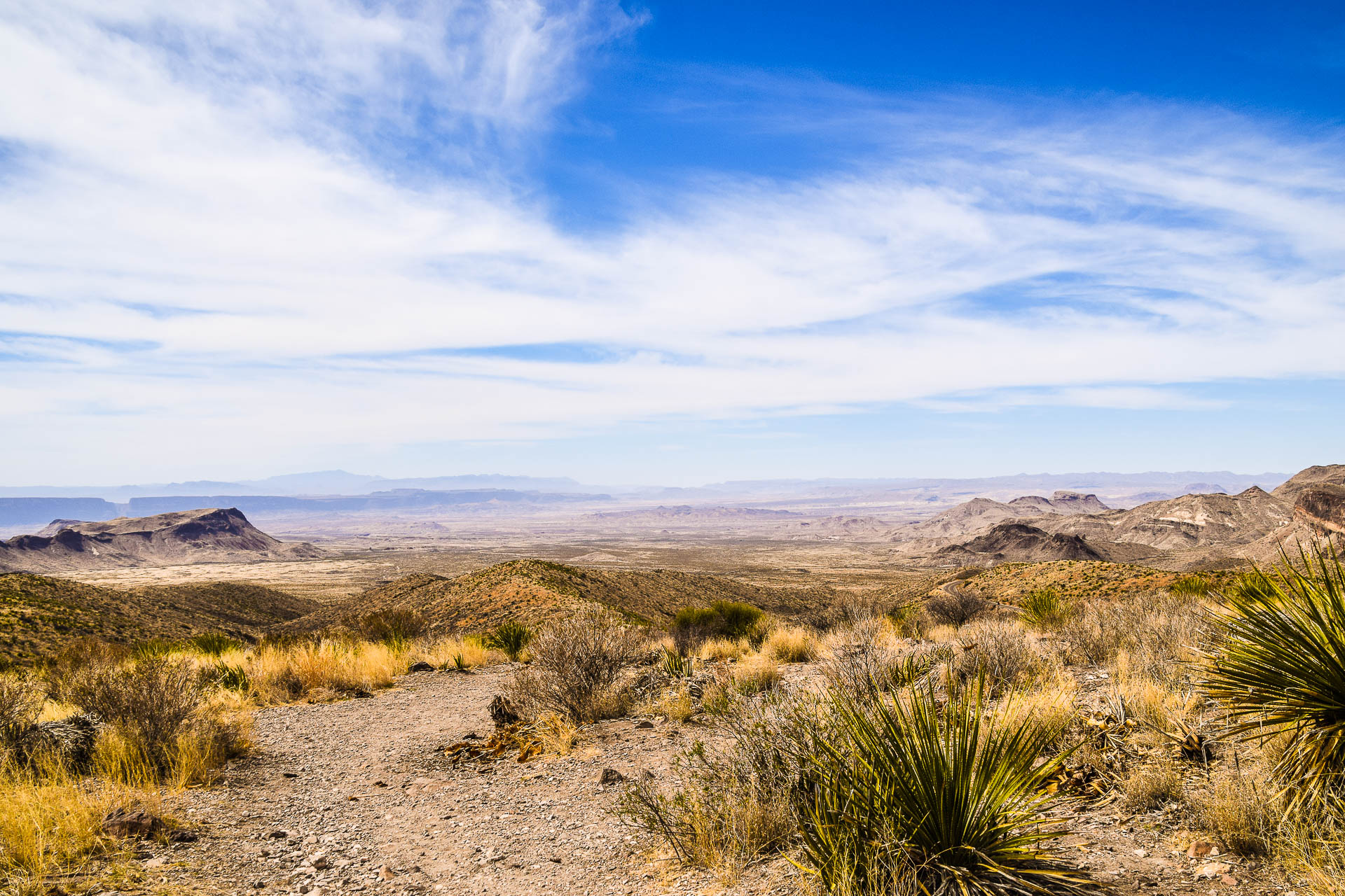 Chihuahuan Desert in Big Bend National Park