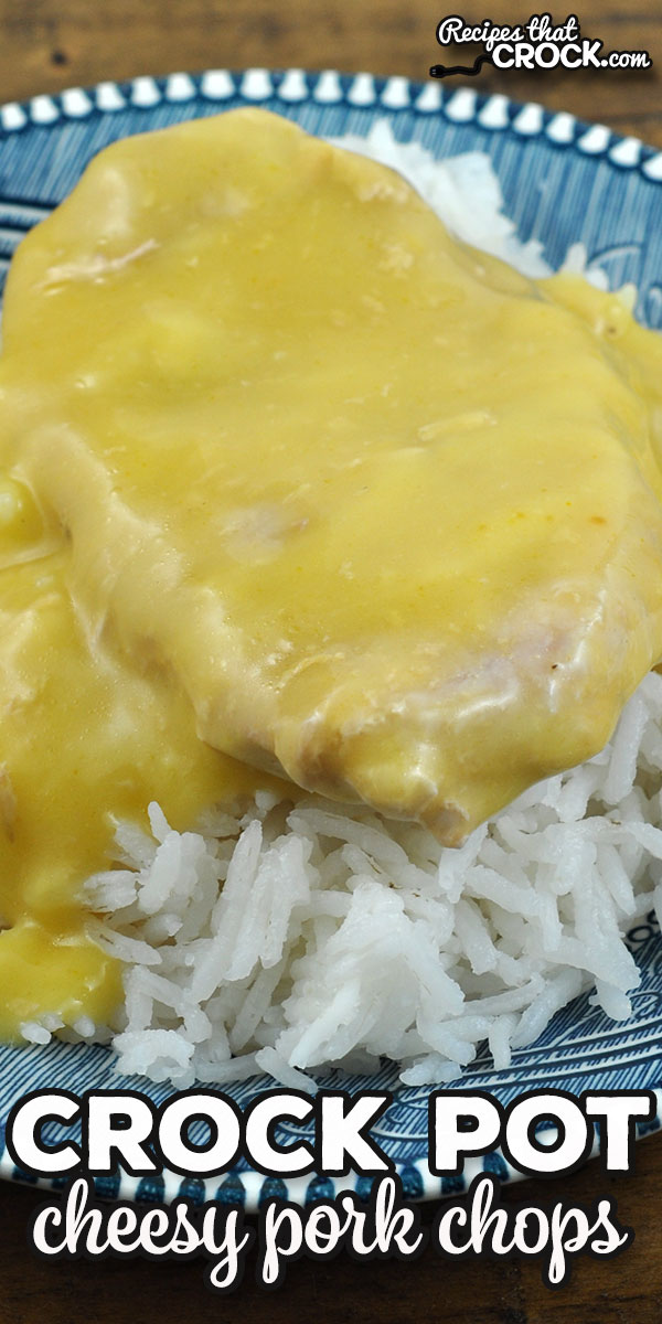 This Crock Pot Cheesy Pork Chops recipe is a favorite in my family. It is not only easy to make, but also super delicious. It is a wonderful comfort food meal! via @recipescrock